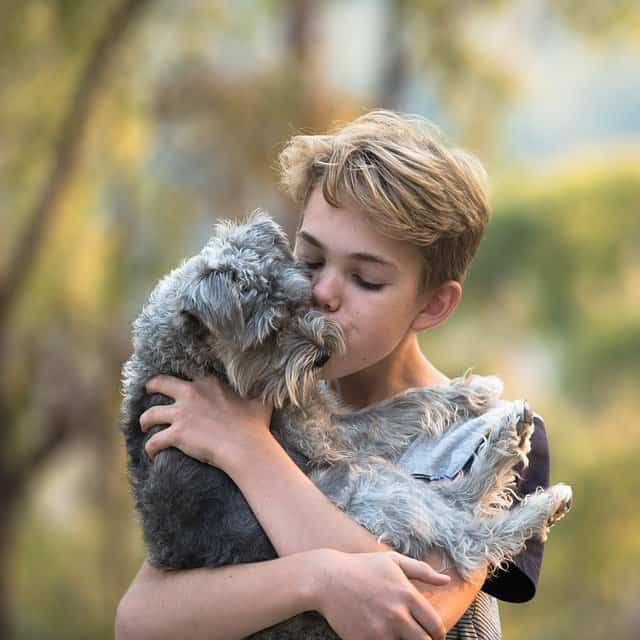 dog bonded to wrong person