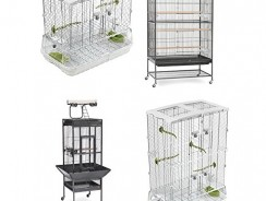 Best Cages For Your Bird | Reviews 2017 [Ultimate Buying Guide]