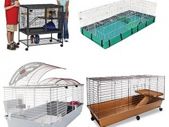 7 Best Guinea Pig Cages 2017 | Ultimate Buying Guide