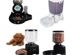6 Best Automatic Cat Feeders Reviews 2017   Ultimate Buying Guide Included