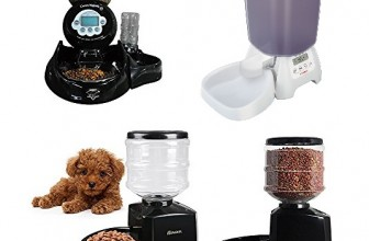 6 Best Automatic Cat Feeders Reviews 2017 | Ultimate Buying Guide Included