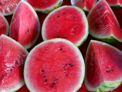 Can Dogs Eat Watermelon? Secret Things You Need To Know