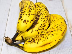 Can Dogs Eat Bananas? The Things You Should Know