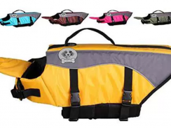 7 Best Dog Life Jacket Reviews [For your Best Friend 2019]