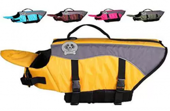 7 Best Dog Life Jacket Reviews [For your Best Friend – 2017]
