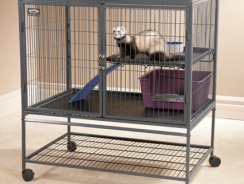6 Top Rated Ferret Cages