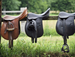 6 Best Horse Saddles