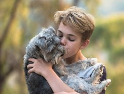 Dog Bonded To Wrong Person – 5 Ways To Win Back Their Love
