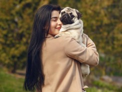 Why Does My Dog Grunt When I Hug Him? 5 Hidden Dog Grunt Meanings